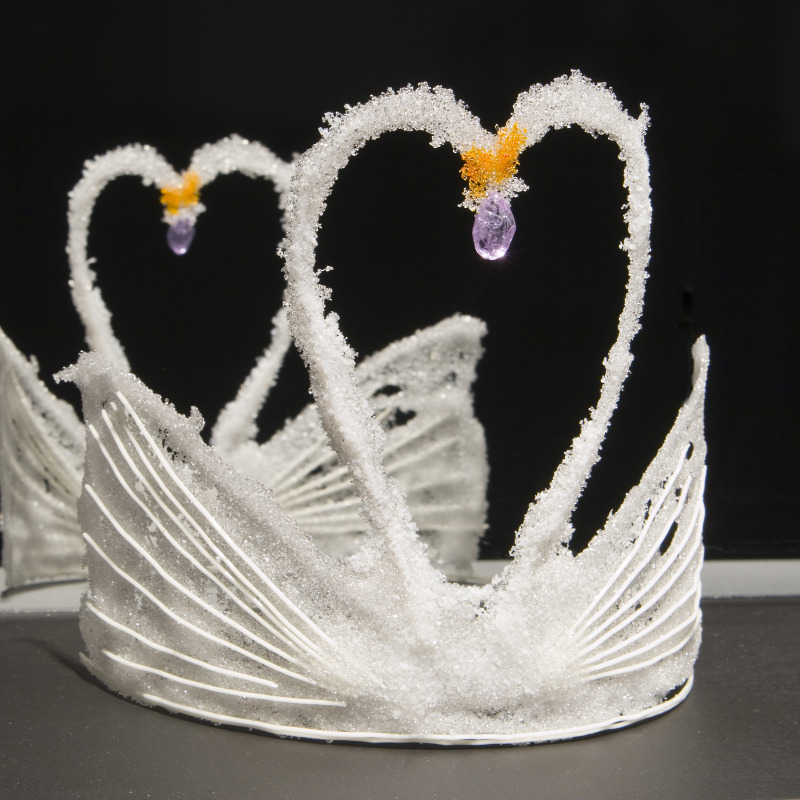 Black swan crown template - photo#7